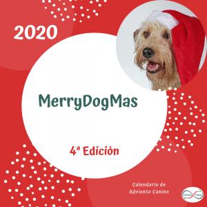 Calendario de adviento canino